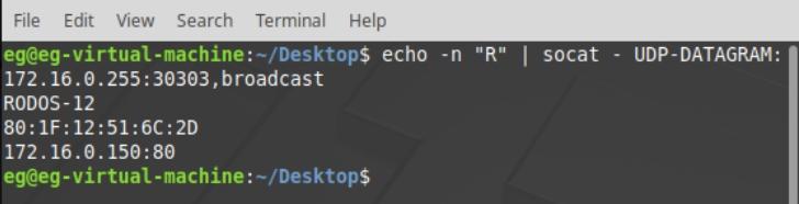 Рис.14 - Получение списка подключенных устройств RODOS-12 DIN по UDP