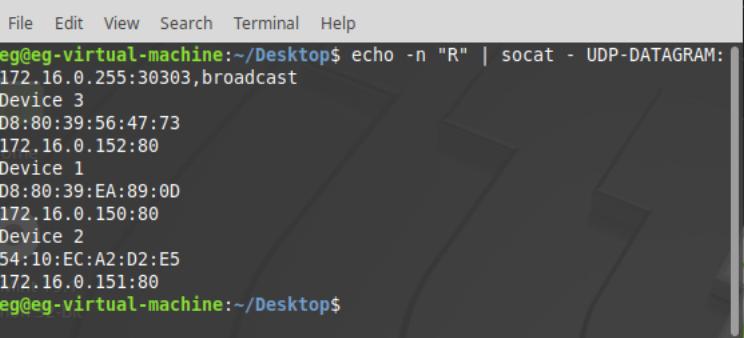 Рис.16 - Получение списка подключенных устройств RODOS-10 Open Frame по UDP